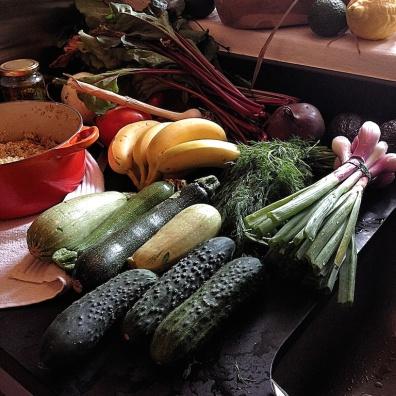 Verse groenten uit de moestuin
